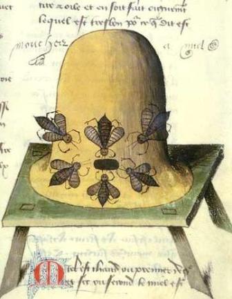 Ul pszczeli; Le  Livre des simples medicines.