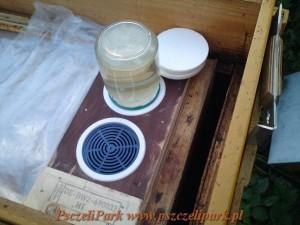 podkarmiaczka dla pszczół